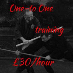 one-to-one-ninjutsu-bujinkan-taijutsu-training